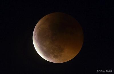 Eclipse lunaire 15 juin 2011 newton 275 mm